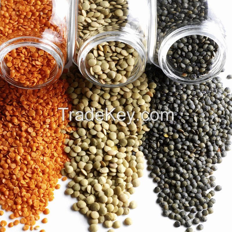 Top Grade-A Green chipped brownish yellow And Pure organic lentils
