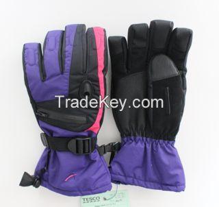 Ski Glove