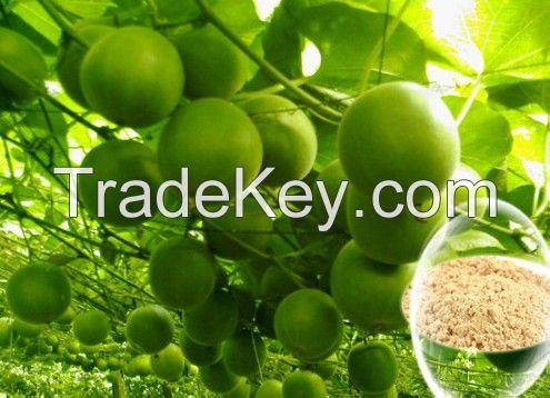 Luo Han Guo Extract Momordica grosvenori Extract 80% Mogroside