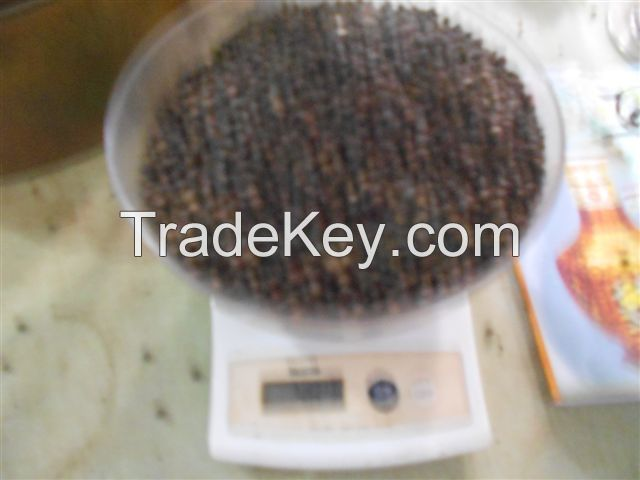 Black pepper with high quality