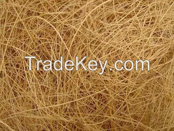 Bangladeshi High quallity coconut fiber