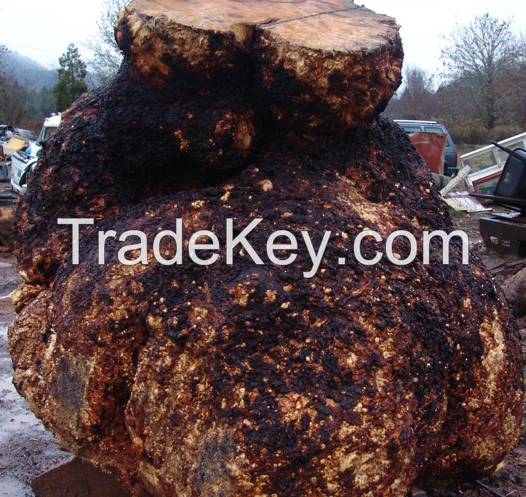 Burl logs