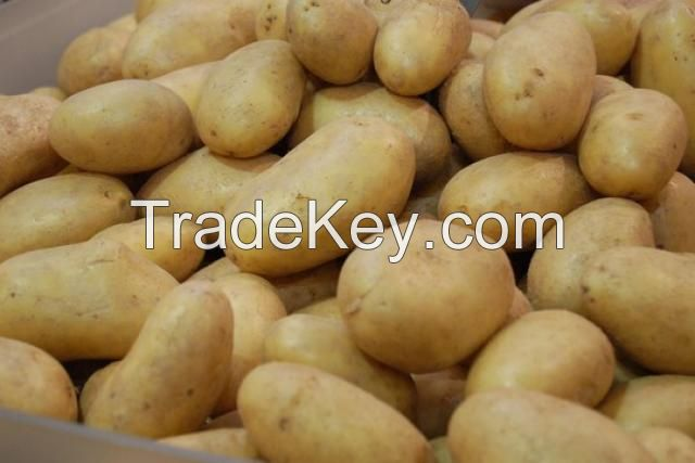 Spanish Fresh Potatoes