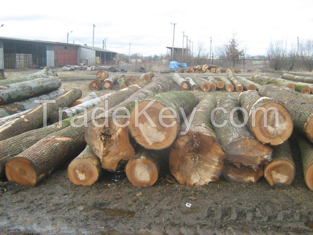 Beech, Ash, Oak logs