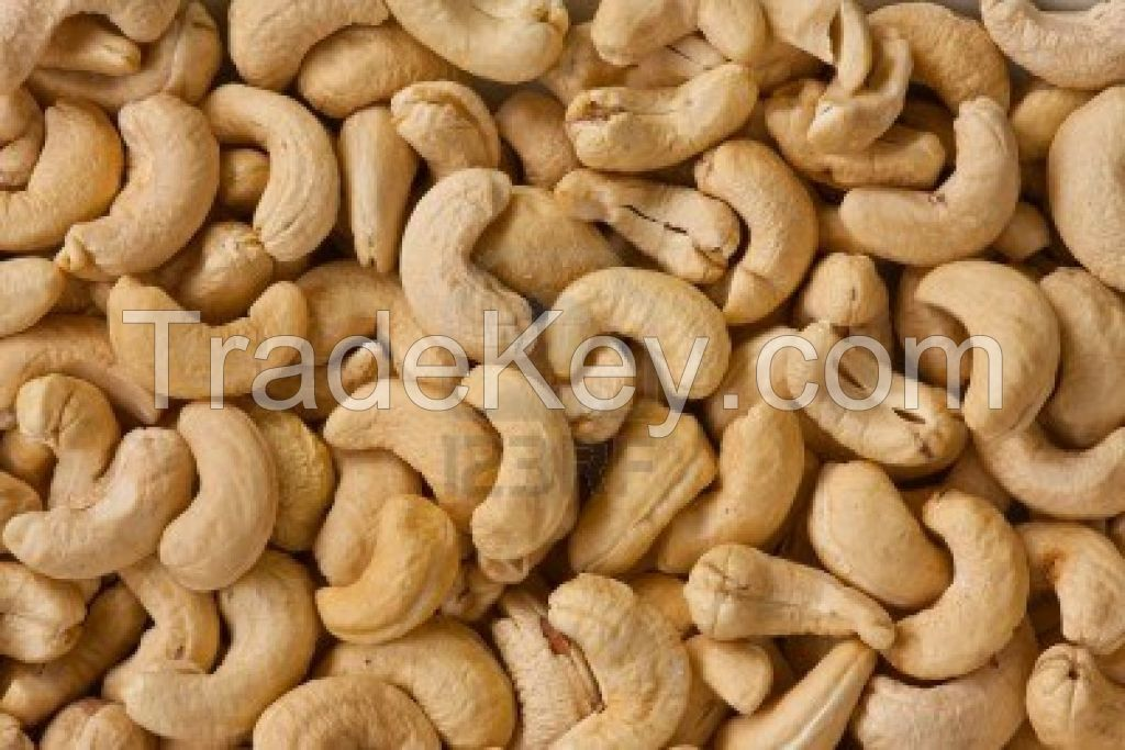 Cashew nuts , Cashew Nuts kernels, Raw Cashew Nuts W320, W240