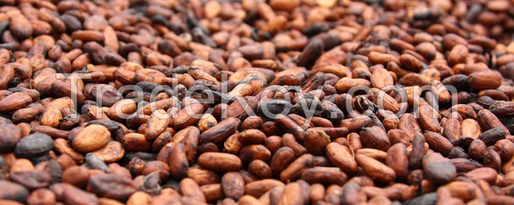 Sun Dried Cocoa Beans(Beans, juice and Powder)