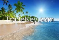 BEACH #19 WALL MURAL $179.93