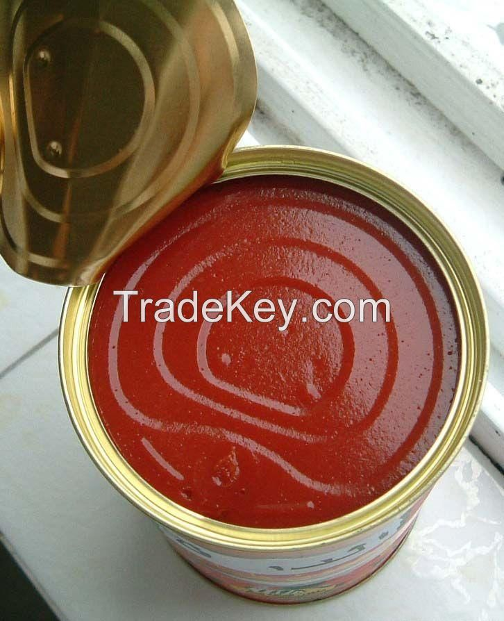 canned tomato paste/sauce/ketchup/puree