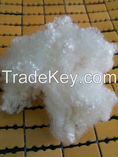 Polyester staple fiber Virgin and Recycled