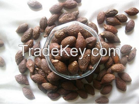Boat-fruited sterculia seed