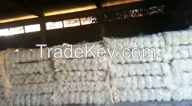 100% Raw Sisal Fiber with Free Samples Available