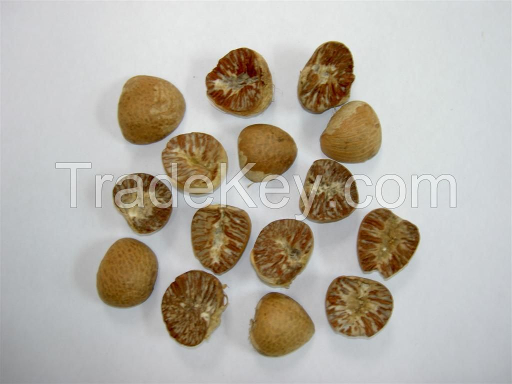 high quality Dried Betel Nut Split  2014 NEW