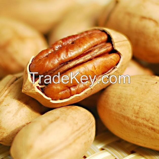 European standard Nutrition Pecan Nut