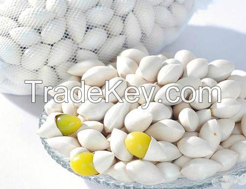 fresh hot sale Ginkgo Nut in shell