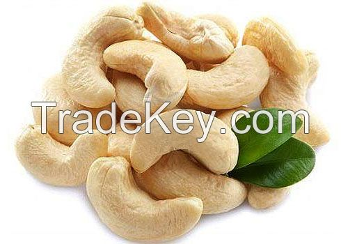100% High Quality Salted Roasted Cashew Nuts