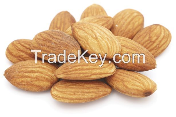 Almond Kernels/Grade A Almond Nuts/almond without shell