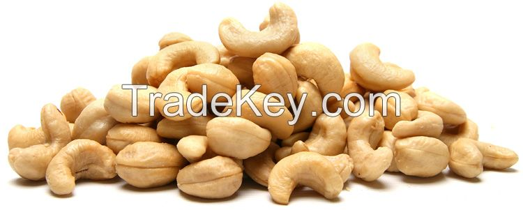 High Quality Raw Cashew Nuts w-240 cashew nuts