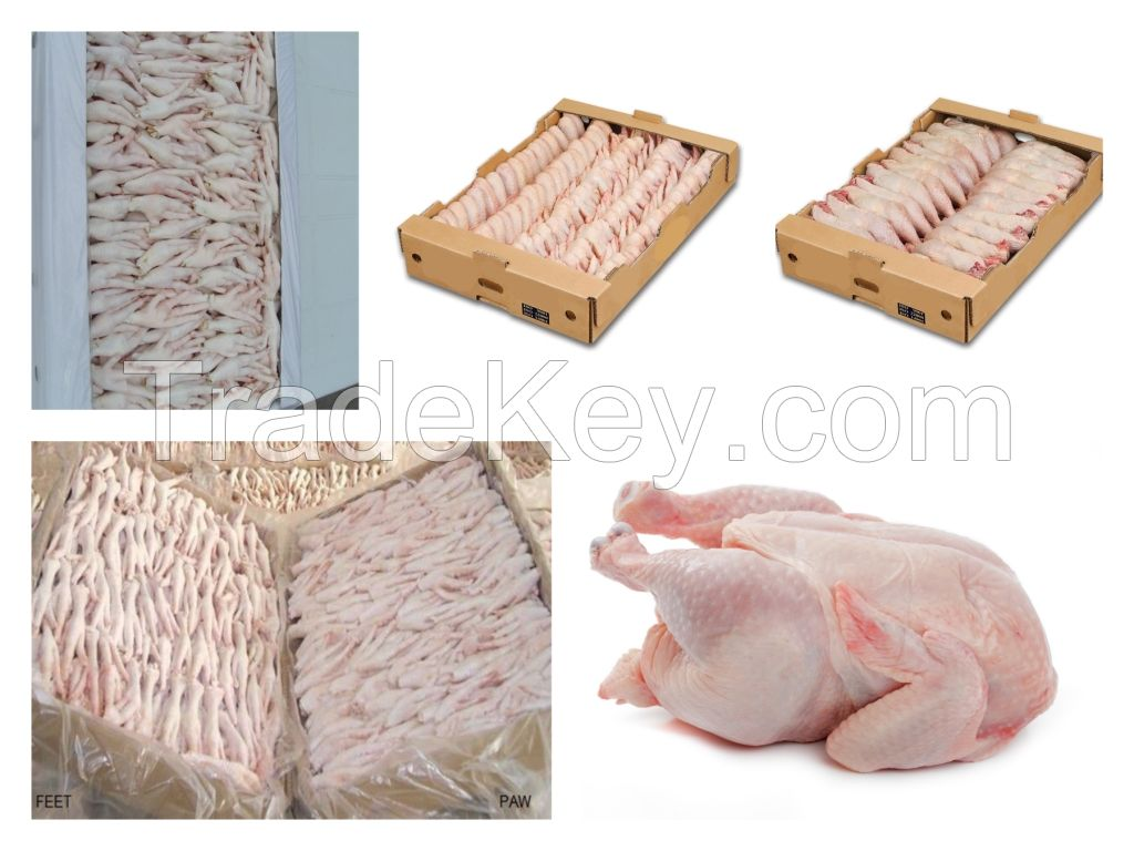 BEST QUALITY GRADE A PROCESSED FROZEN Chicken feets, chicken paws, whole chicken, chicken wings, breast, thighs, drumstick
