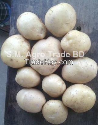 Bangladesh Potato Diamond/Granola