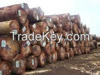 African Hardwood Logs and Timber