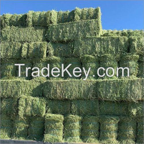 Best Grade Alfalfa Hay For Animals