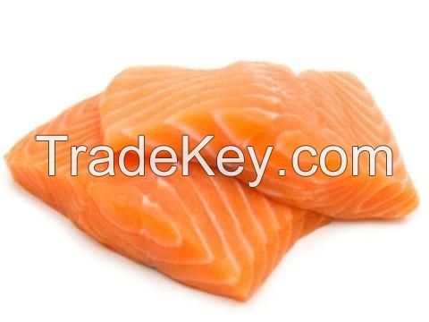 Fresh Salmon Fish Fillet