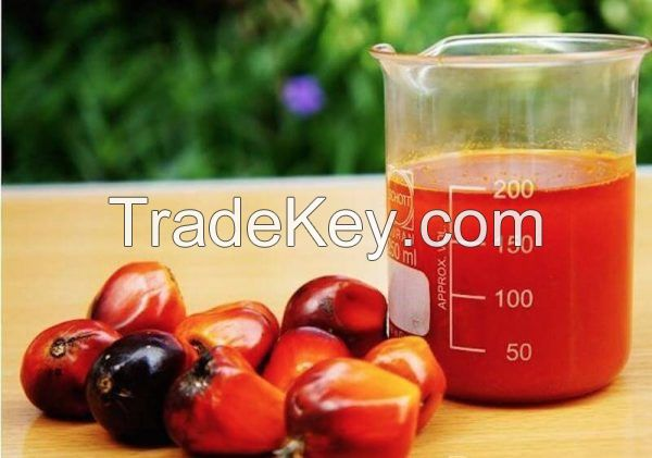 Palm Oil extract