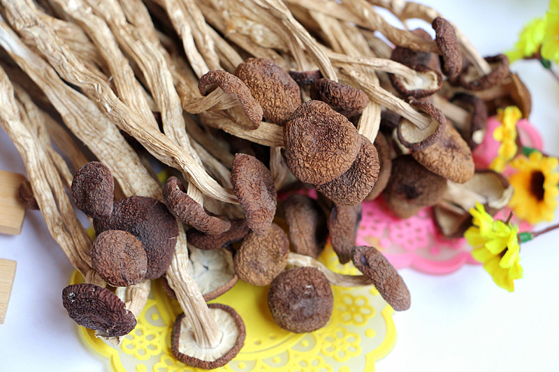 Dried Agrocybe Cylindracea