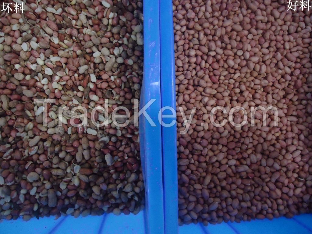 Peanuts Color Sorter