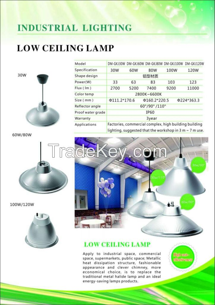 Low Ceiling Lamp