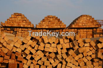 wooden impregnated poles for power transmission and electrical communication lines
