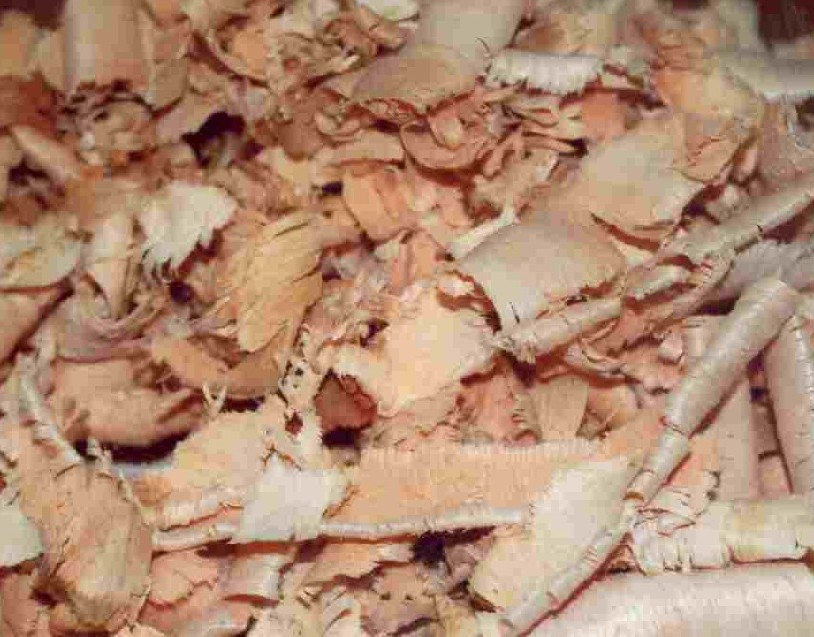 WOOD SHAVINGS AND CHIPS