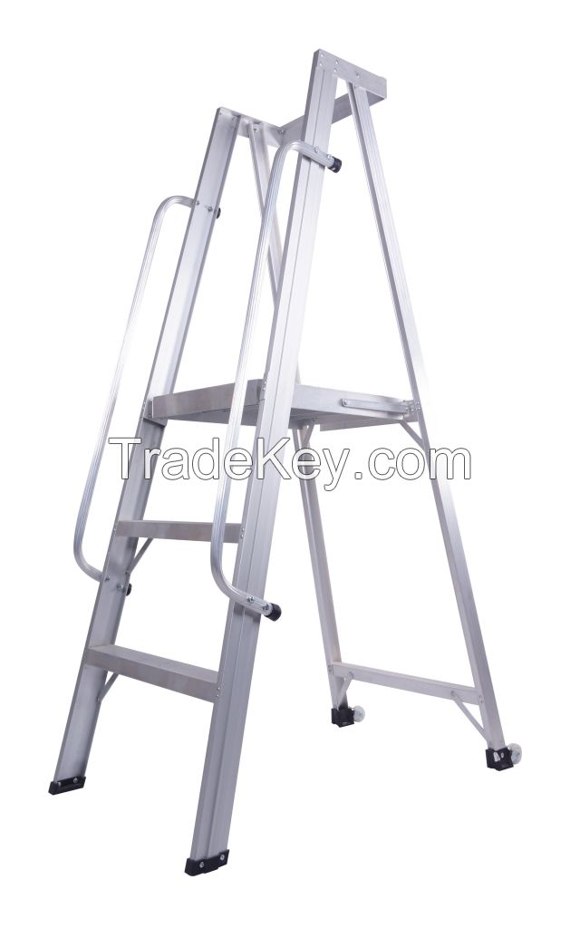 Ladder and Scaffodlings