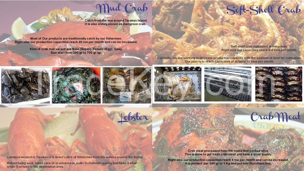 crab,fish,shrimp,etc