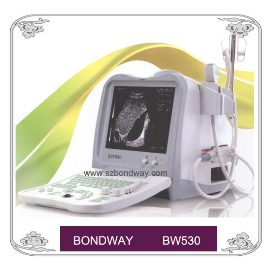 Digital Ultrasound Scanner ( BW530)
