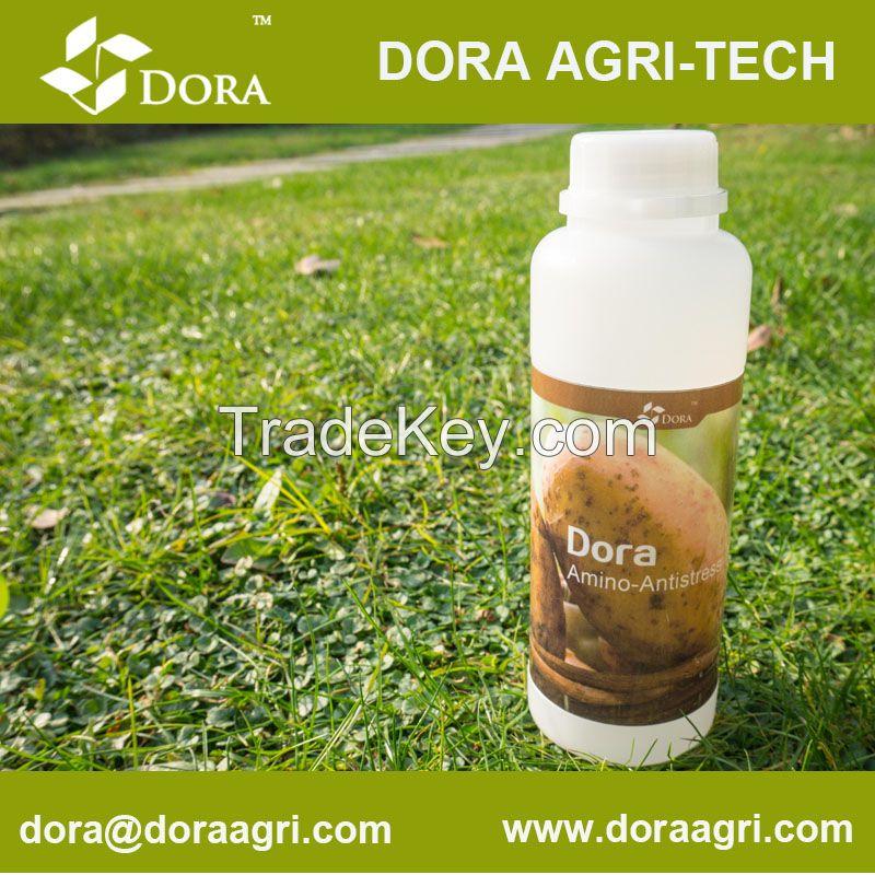 DORA Enhancer Bio