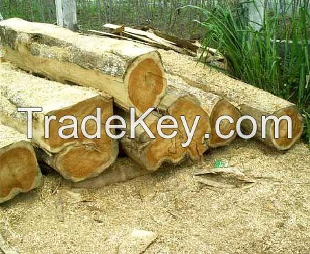 Keruing, Teak, Mersawa Logs from Lao