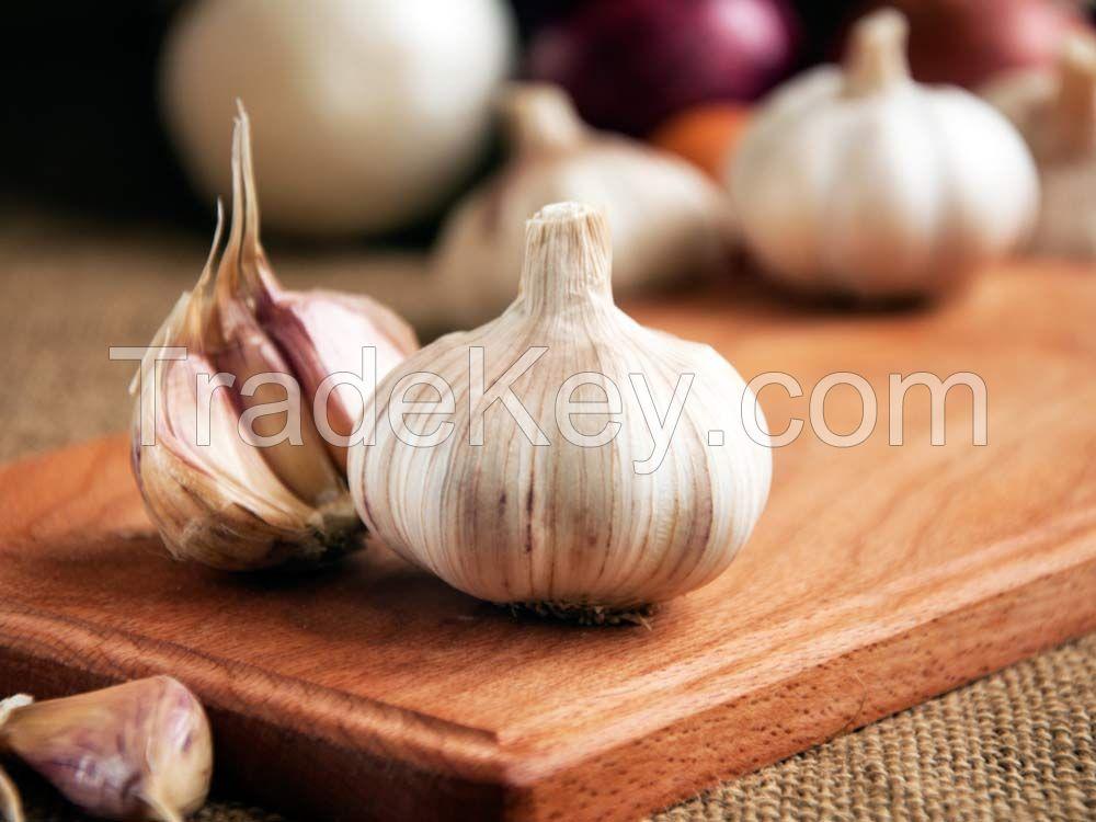 Fesh garlic
