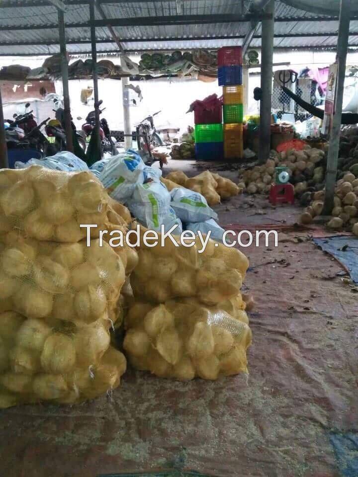 Mature coconut, semi husked mature coconut/ dehusked coconut vietnam Sophia whatsapp +84987364651