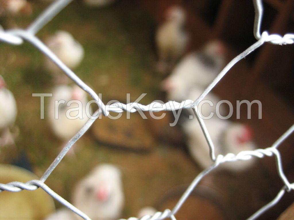 chicken wire in Pakistan