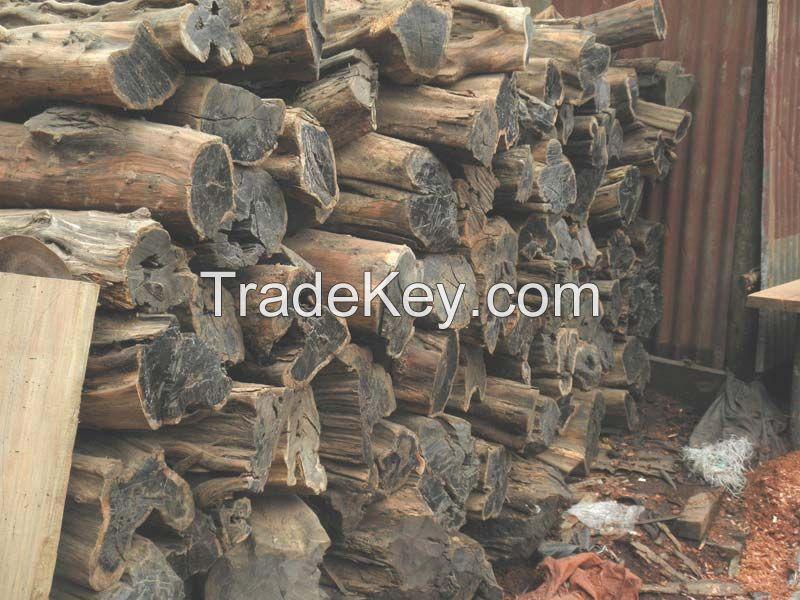 Ebony logs suppliers nigeria