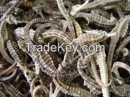 Dried Seahorse/Dry Sea Cucumber/Dry Abalone