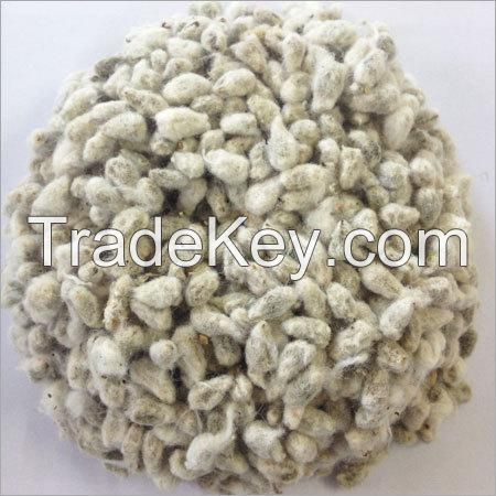 Cotton Seed,Cotton Oil Cake,Maize,Sunflower Oil Cake,Soya Oil Cake,Copra Oil Cake,Hominy Chop,Wheat Bran,Lucerne,Wheat,Fish Meal,Molasses, Wheat, Sorghum, Barley