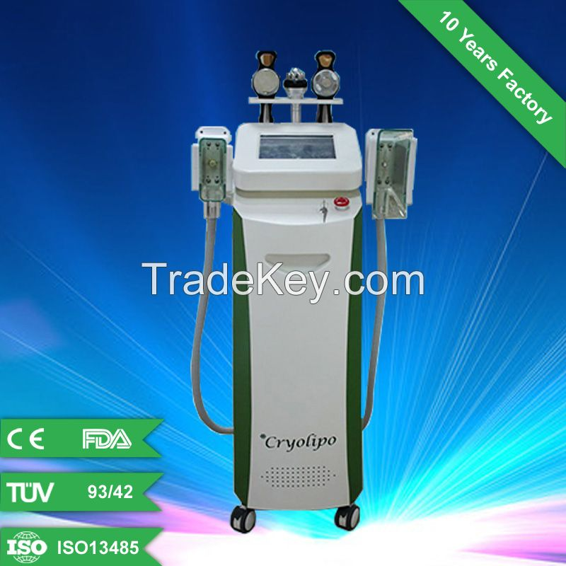 Effective Cryolipolysis weight loss+CE+body slimming