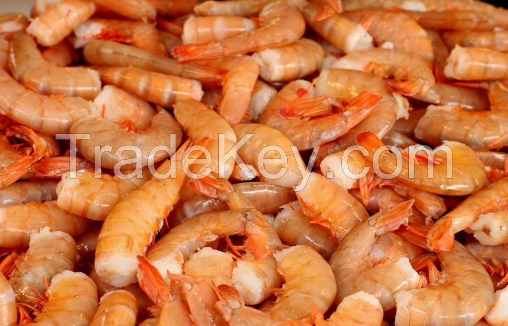 Ribbon Fish, octopus, shrimps