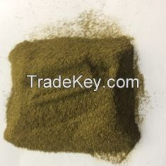 Green Tea Powder  (for Extracting Purpose)