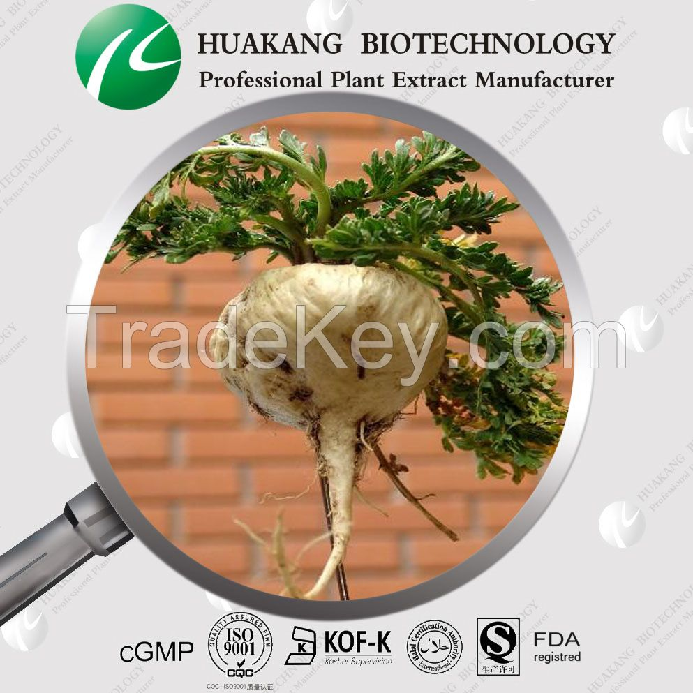 High Quality Maca Extract