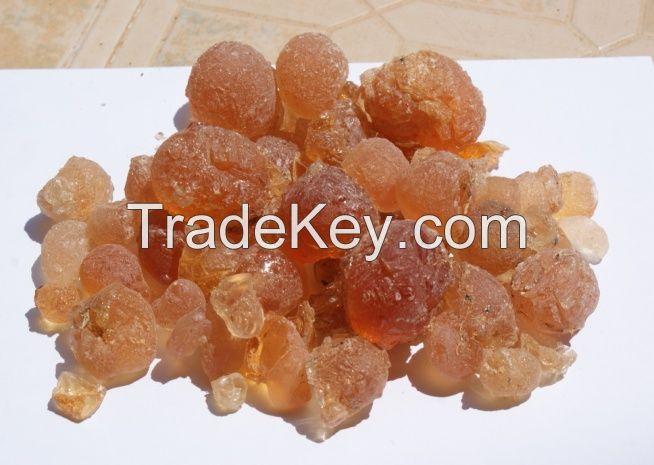 Gum Hashab