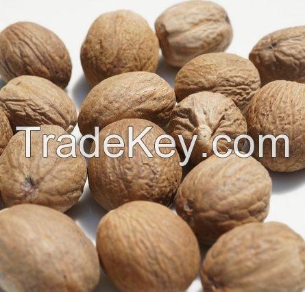 Indonesia Nutmeg