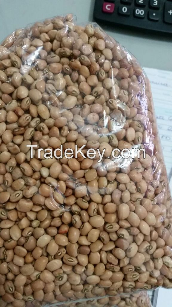 Brazilian Brown Eye Beans, Cowpeas, Popcorn, Non-Corn GMO and Yellow Millet